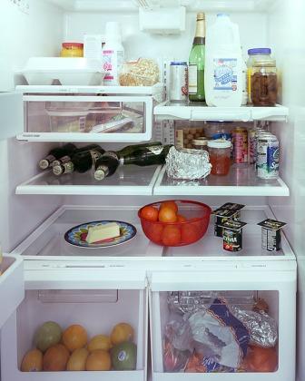 fridgeimage-12